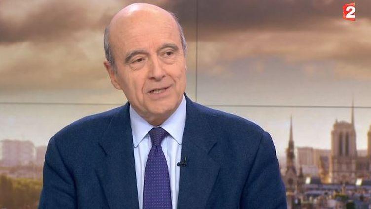 Alain Juppé, maire de Bordeaux, sur le plateau du journal de 20 heures de France 2, le 3 février 2015. (FRANCE 2 )