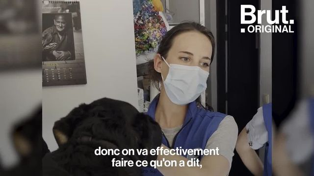 Pendant ce temps-là, à Lyon, ces étudiantes en école vétérinaire soignent gratuitement les animaux des personnes démunies et sans-abri.