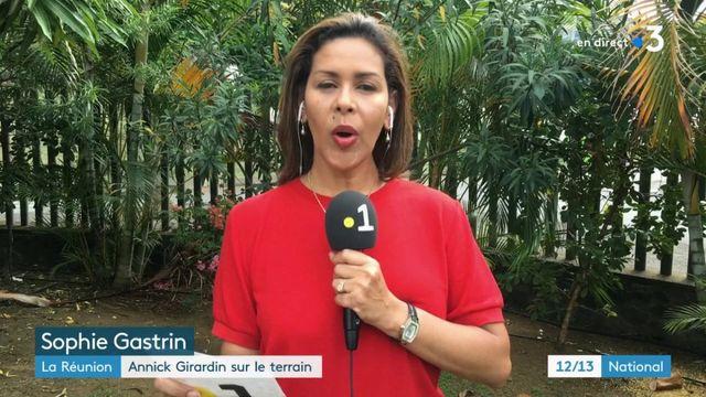 """""""Gilets jaunes"""" : à La Réunion, l'économie est paralysée"""