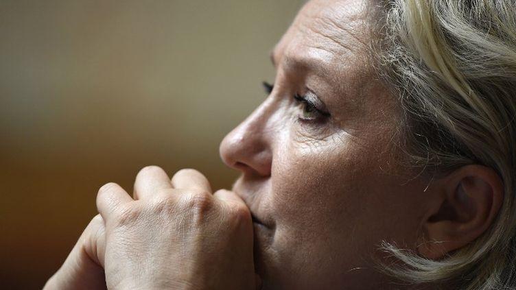 La rentrée du FN devrait s'articuler autour de trois temps forts, avec notamment unséminaire des élus du FN le 15 septembre à Poitiers (BERTRAND GUAY / AFP)