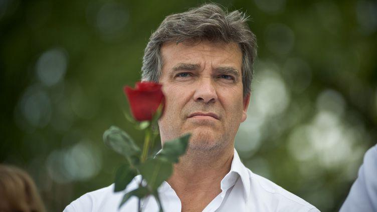 L'ex-ministre de l'Economie Arnaud Montebourg, lors de la Fête de la Rose à Frangy-en-Bresse (Saône-et-Loire), le 24 août 2014. (NICOLAS MESSYASZ / SIPA)