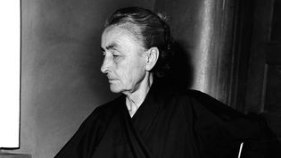 Georgia O'Keeffe en 1962  (Fred Stein / picture alliance / Picture-Alliance/AFP)