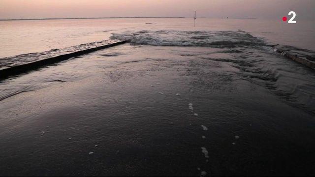 Vendée : sur le mythique passage du Gois, qui vit au rythme des marées
