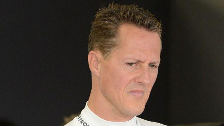Michael Schumacher, une légende de la F1 (TORU YAMANAKA / AFP)