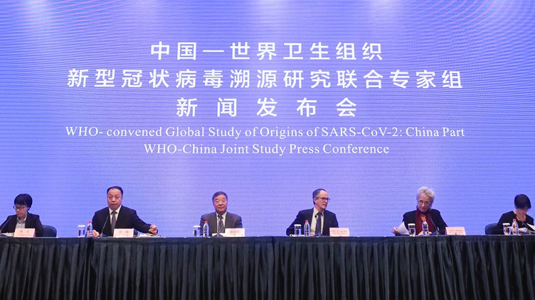 Des experts de l'OMS donne une conférence de presse sur les origines du Covid-19, le 9 février 2021 à Wuhan (Chine). (CHENG MIN / XINHUA / AFP)