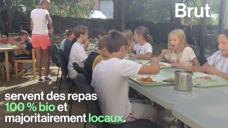 VIDEO. Les cantines scolaires de Mouans-Sartoux, ces enfants modèles de la cuisine bio (BRUT)