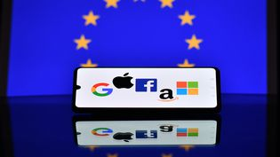 Illustration des logos des GAFAM (Google, Apple, Facebook, Amazon et Microsoft). (JUSTIN TALLIS / AFP)