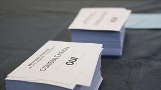 La Constitution ne permettrait pas à Nicolas Sarkozy d'organiser des référendums sur les thèmes qu'il a récemment évoqués. (CITIZENSIDE/THOMAS GIRONDEL / CITIZENSIDE)