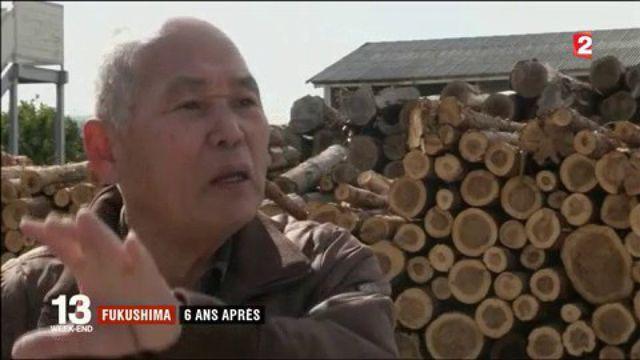 Japon : six ans après la catastrophe de Fukushima