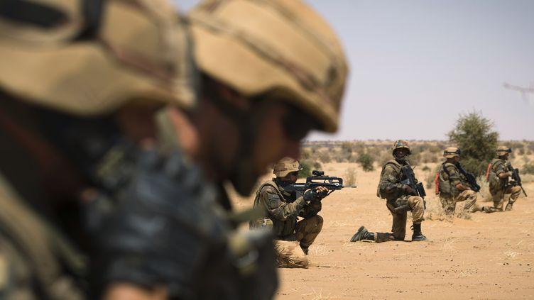 Des militaires français participent à une opération, le 8 avril 2013, à une centaine de kilomètres au nord de Gao (Mali). (JOEL SAGET / AFP)