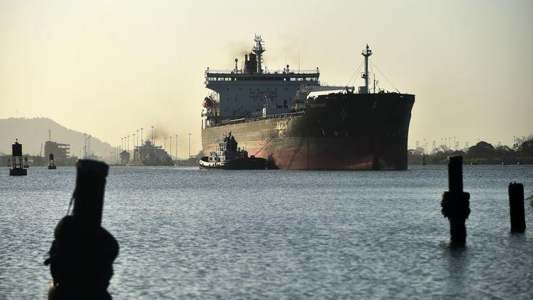 Un cargo passe par le canal de Panama, le 22 février 2018. (RODRIGO ARANGUA / AFP)