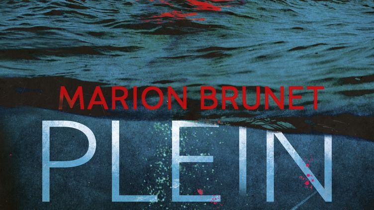 """""""Plein Gris"""" de M. Brunet (EDITIONS PKJ)"""