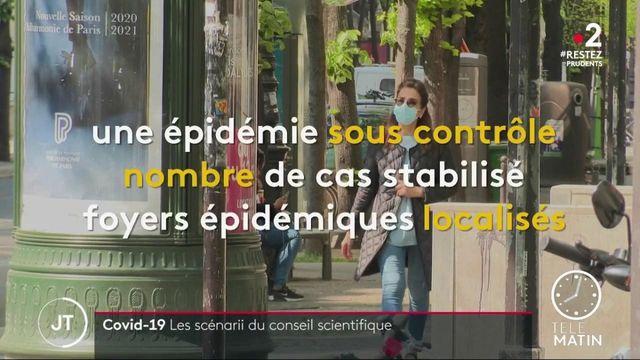 Covid-19 : les hypothèses du conseil scientifique face à l'épidémie