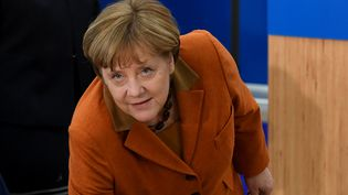 Angela Merkel, le 15 mars 2017. (PATRIK STOLLARZ / AFP)