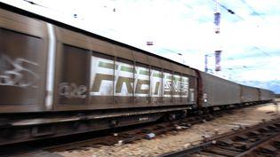 Un train de marchandises constitué de wagons de fret. (GERARD JULIEN / AFP)