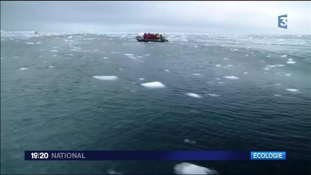 Arctique : la croisière climatique fait polémique