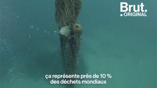 VIDEO. Cette asso récupère les filets de pêche abandonnés en mer (BRUT)