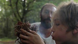 Des familles ont choisi de passer leurs vacances en mode survie, dans les forêts du Périgord, cet été. Reportage auprès de ces apprentis aventuriers. (FRANCE 2)