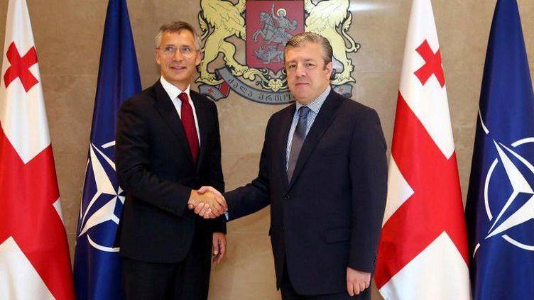 Le secrétaire général de l'OTAN, Jens Stoltenberg (G), et le Premier ministre de Géorgie, Giorgi Kvirikashvili, à Tbilissi, le 7 septembre 2016. (Agence ANADOLU /AFP)