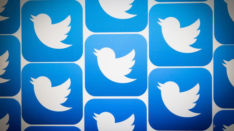 Le logo de la plateforme Twitter (illustration). (JAAP ARRIENS / NURPHOTO)