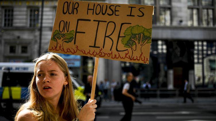 Une manifestante du groupe Extinction Rebellion, devant l'ambassade du Brésil à Londres (Royaume-Uni), le 23 août 2019. (ALBERTO PEZZALI / NURPHOTO / AFP)