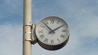 L'horloge à l'entrée du parc Saint-Marie de Nancy (Meurthe-et-Moselle). (ISABELLE BAUDRILLER / FRANCE-BLEU SUD LORRAINE)