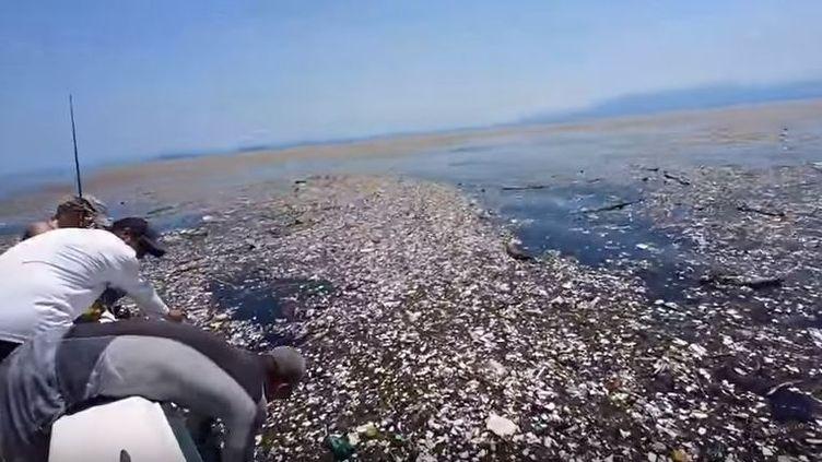 Capture d'écran montrant des déchets plastiques dans l'océan au large de l'île deRoatan, non loin du Honduras, octobre 2017 (CAROLINE POWER / FACEBOOK)