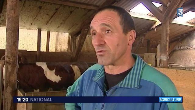 Agriculture : les éleveurs à bout de souffle