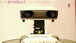 """""""Envoyé spécial"""". Robots, le meilleur des mondes ? (FRANCE 2 / FRANCETV INFO)"""