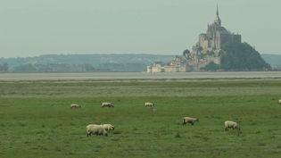 Mont-Saint-Michel : les trésors de la baie, patrimoine mondial de l'Unesco (France 3)