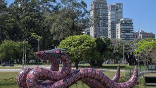 Une oeuvre de l'artiste brésilien indigène Jaider Esbell à la Biennale d'art contemporain de São Paulo (2 septembre 2021) (NELSON ALMEIDA / AFP)