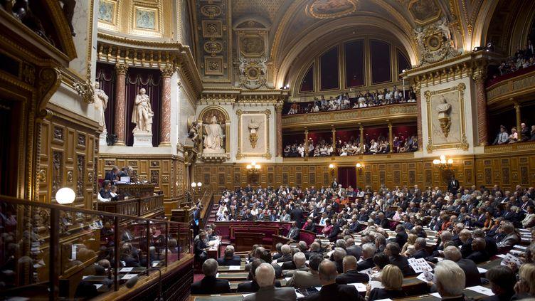 Le Sénat a adopté dans la nuit de mardi 15 à mercredi 16 novembre une proposition de loi socialiste amendant l'immunité du chef de l'Etat. (FRED DUFOUR / AFP)
