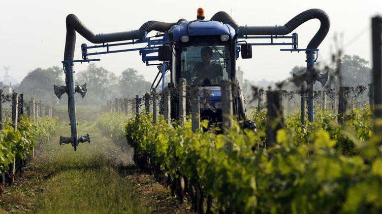 Un tractoriste traite les vignes avecun tracteur pulvérisateur de sulfate, le 24 mai 2012, à Macau,au nord de Bordeaux (Gironde). (Photo d'illustration) (JEAN-PIERRE MULLER / AFP)