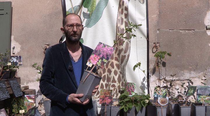 Sylvain Mabon, pépiniériste en Bretagne. (ISABELLE MORAND / RADIO FRANCE / FRANCE INFO)