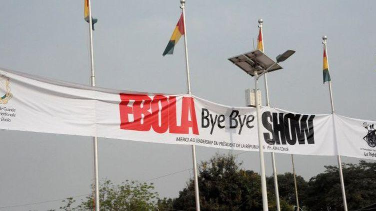 Le 30 décembre 2015 à Conakry, une fête marquait l'éradication du pays du virus Ebola. (AFP/Cellou Benani)