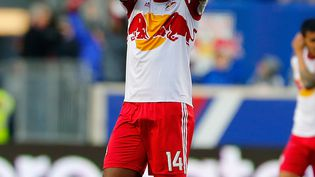 L'attaquant Thierry Henry, le 23 novembre 2014, sous le maillot des New York Red Bulls, à Harrison (New Jersey). (MIKE STOBE / GETTY IMAGES NORTH AMERICA / AFP)