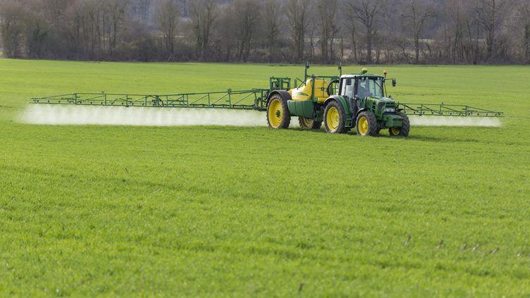 Pulvérisation de pesticides en agriculture (photo d'illustration) (MAXPPP)