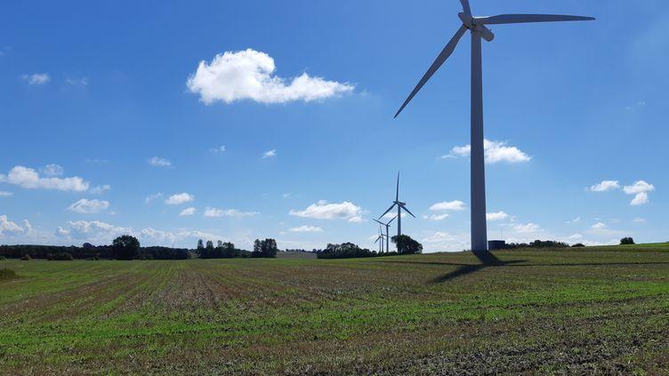 Samsøcompte 21 éoliennes, en terre et en mer. Certaines sont possédées par des habitants. (JEROME JADOT / RADIO FRANCE)