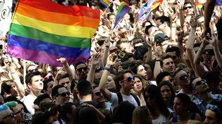 La Lesbian & Gay Pride dans les rues de Lyon (Rhône), le 14 juin 2014. (MAXPPP)