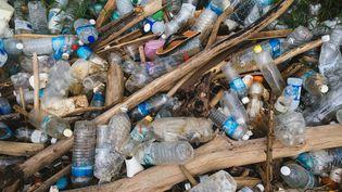 Bouteilles en plastique rejetées par la mer, sur une plage de Malaysie, en 2017. (Getty Images)
