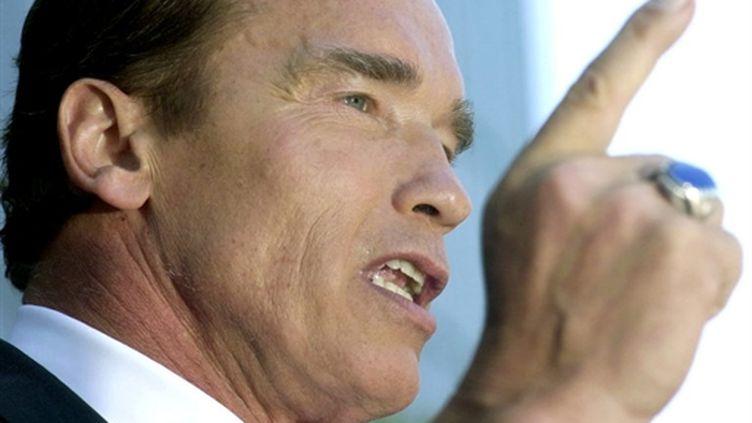 Arnold Schwarzenegger, 63 ans, est passé avec succès des grands écrans à la politique. (GETTY IMAGES NORTH AMERICA/DAVID MCNEW)