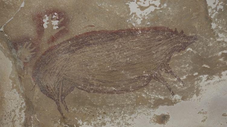 Ce sanglier des Célèbes, peint il y a plus de 45 500 ans et découvert en 2017 dans une grotte de Sulawesi (Indonésie), est la plus ancienne peinture rupestre connue (MAXIME AUBERT / GRIFFITH UNIVERSITY / AFP)