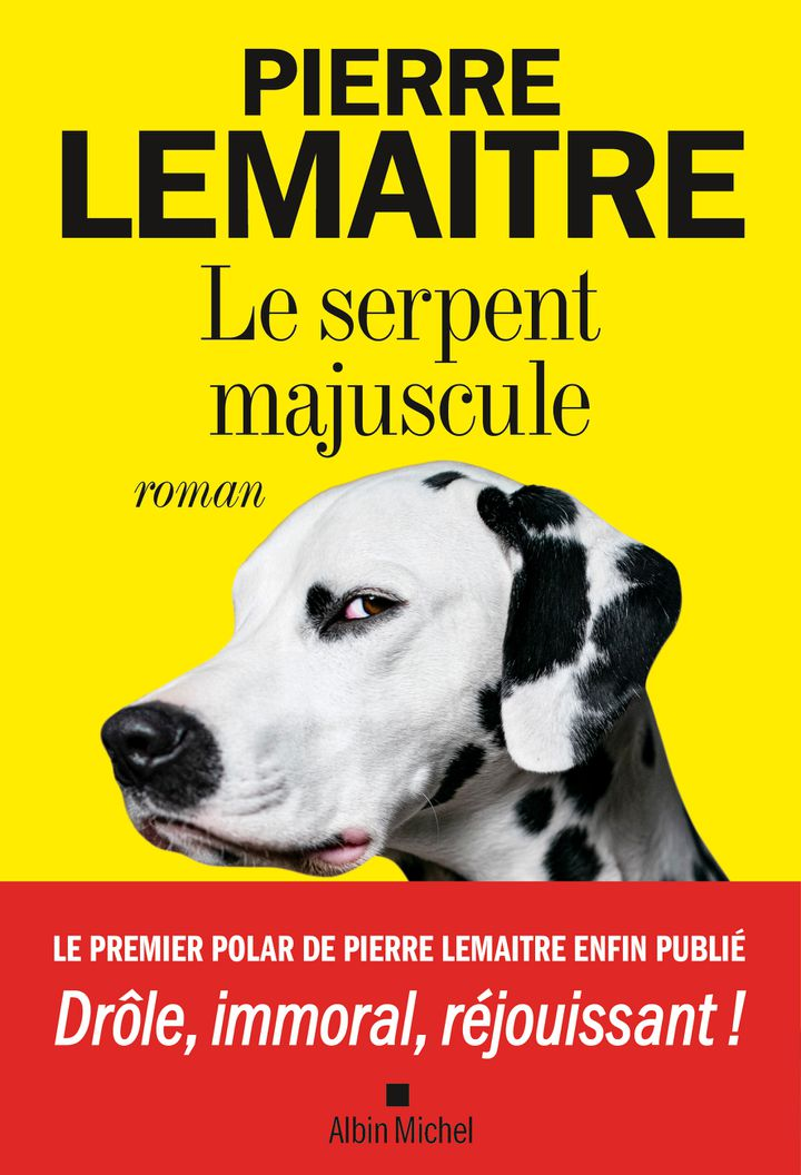 """Couverture du roman """"Le serpent majuscule"""", de Pierre Lemaitre, mai 2021 (EDITIONS ALBIN MICHEL)"""