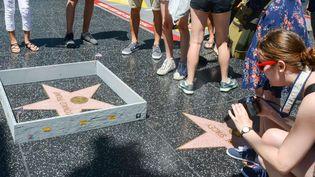 L'artiste de street-art Plastic Jesus a détourné l'étoile de Donald Trump sur le Walk of fame, à Los Angeles.  (NSB/ZOJ/WENN.COM/SIPA)