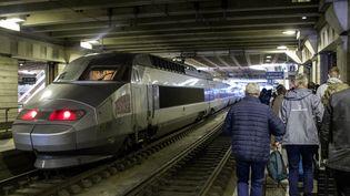 Un TGV à la gare Montparnasse, à Paris, le 6 juin 2019. (MAUD DUPUY / HANS LUCAS / AFP)