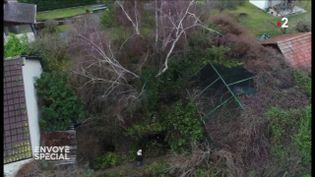 Envoyé spécial. Dans un jardin alsacien, une vraie Arche de Noé (FRANCE 2 / FRANCETV INFO)