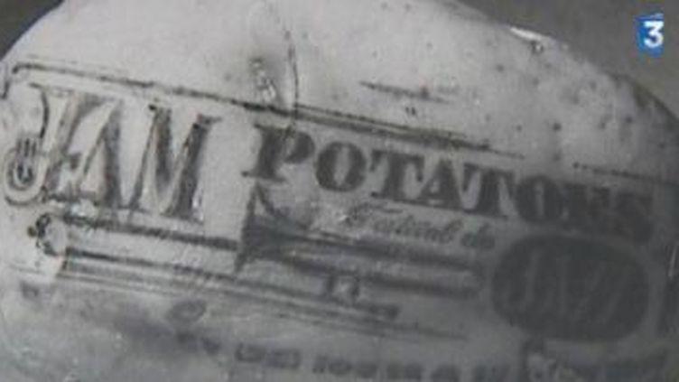 Le Jam Potatoes de Luneray : 40 ans et toujours la patate !  (Culturebox)