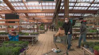 Le retour du beau temps a donné des envies de jardinage à un grand nombre de personnes. Les magasins spécialisés ont enregistré une forte hausse de la fréquentation depuis le week-end du 20 au 21 février. (France 2)