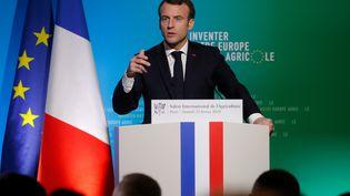Le président de la République, Emmanuel Macron, s'exprime au Salon de l'agriculture à Paris, le 23 février 2019. (CHARLES PLATIAU / AFP)