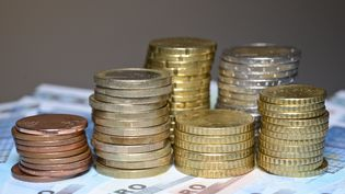 Des euros en pièces et en billets. (Photo d'illustration) (MAXPPP)